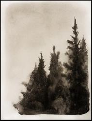<p>Rorschachskog 2 (privat) - akvarell på akvarellpapper, 28 x 21 cm. 2014</p>